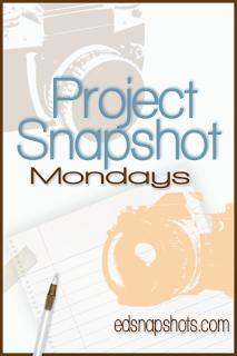 Project Snapshot Week 3 Logo | Everyday Snapshots