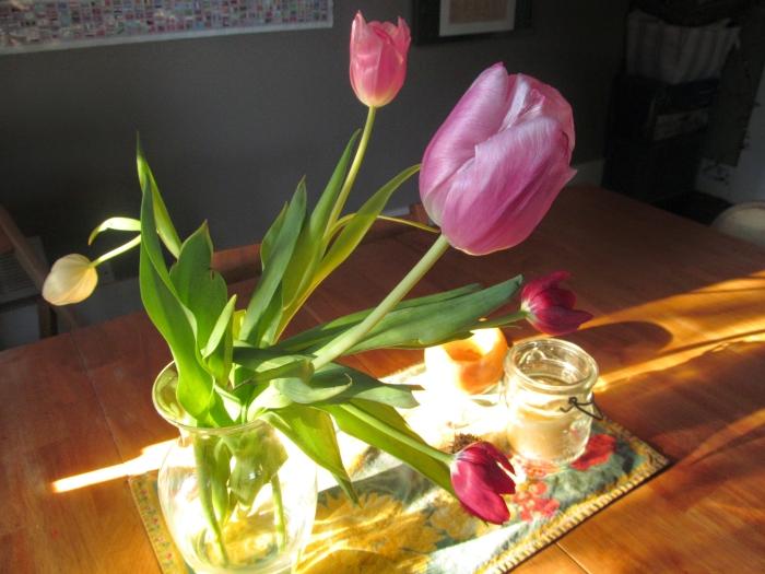 Feb flowers