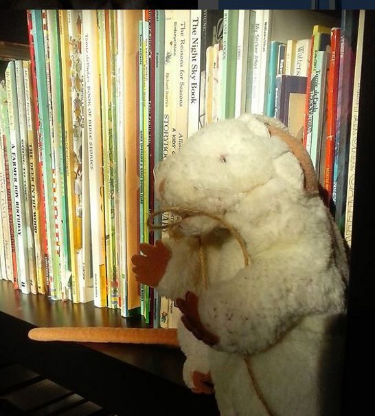 A rat with a string around it's neck....because we're reading Tom Sawyer!