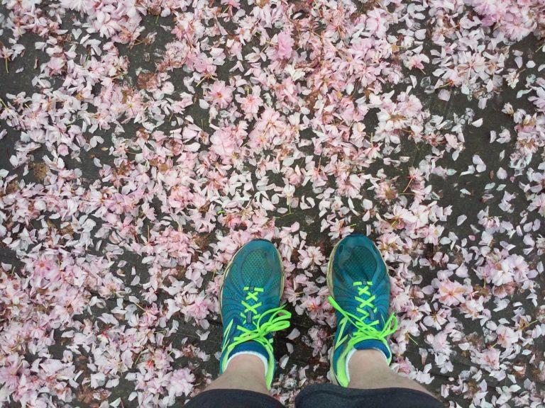 Springtime Running Update