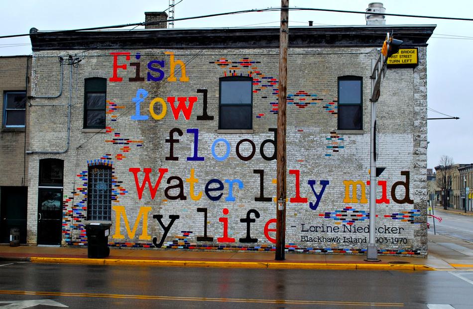 Solitar Plover Mural